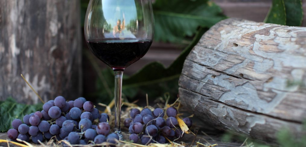 Glass of wine surrounded by grapes and logs